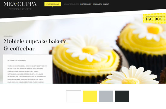 good_website_color_example